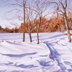 Snowy Pasture1